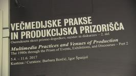 Borčić, Barbara - Multimedia Practices and Venues of Production