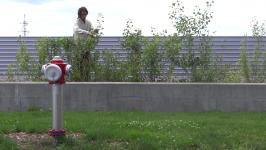 Urban Plants Cu(l)t