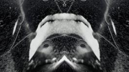 Uršula Berlot - Orcinus Orca