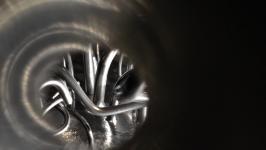 Uršula Berlot - Observatorij: ogljikove nanocevke