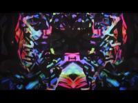 Uršula Berlot - Traktografski kaleidoskop