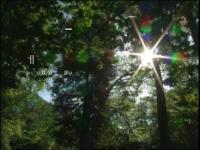 Miha Vipotnik - Človek poslušanja