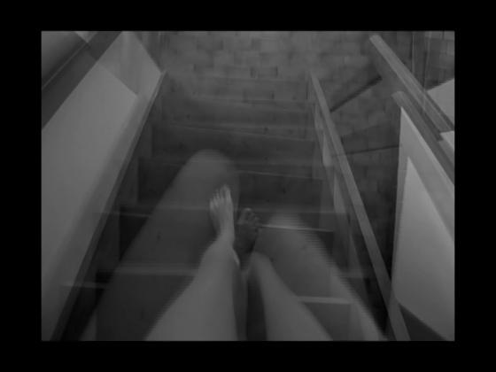 Lažetič, Tanja - Nude Descending